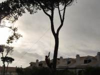 Mike hanging from a tree (Portugal ARWC 2009)