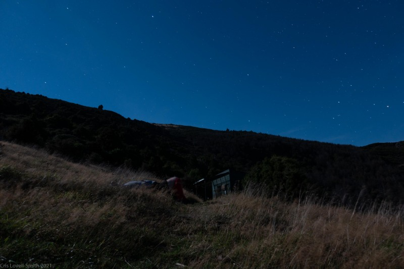 Lying out in the grass (Rod Donald Hut March 2021)