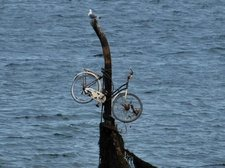 Funky bike (Lafoten, Norway) - crop resize