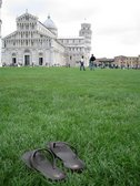 Signs of a kiwi in Italy (Pisa, Italy) resize
