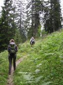 Chris and Karin walking through the forest (Allgäu, Germany) resize