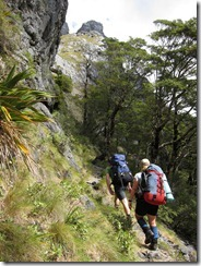 Walking (Tramping Mt Owen)