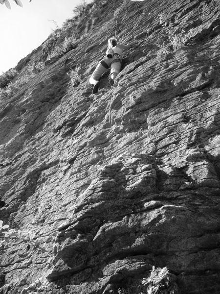 Frauke climbing at the sea cliffs (Golden Bay)