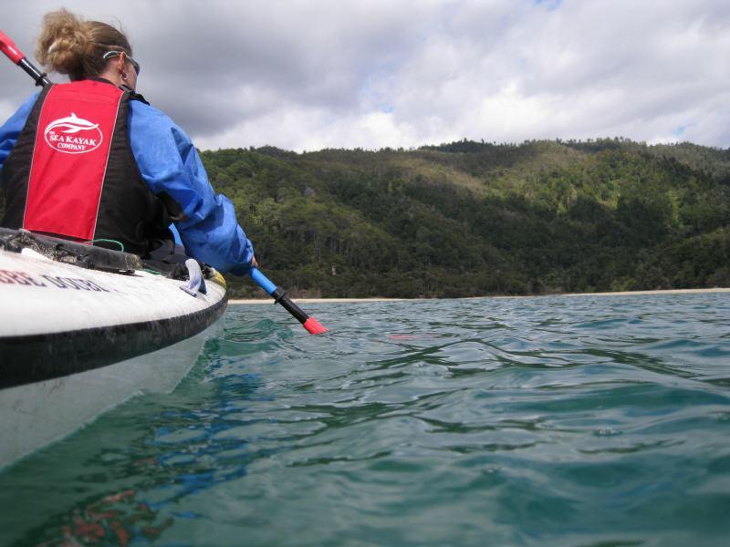 Kayaking (Abel Tasman NP)