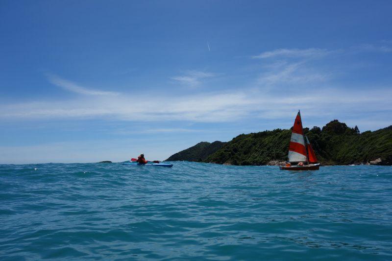 Holly following the boat (Takaka 2013)
