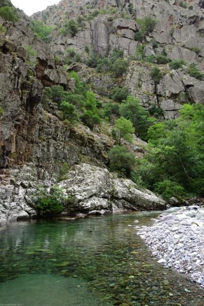 Image 1245 (D147, Asco, Haute-Corse, Corsica)
