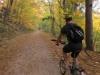 Joe takes on the Black Forest (Freiburg, Germany)