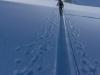 More crossing of the Jamtalferner (Ski touring Jamtalhuette)