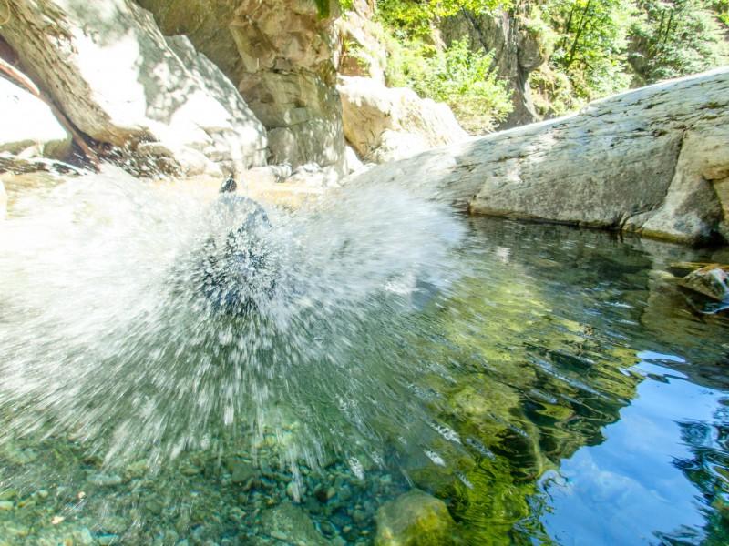 Splash (Canyoning Italy 2019)