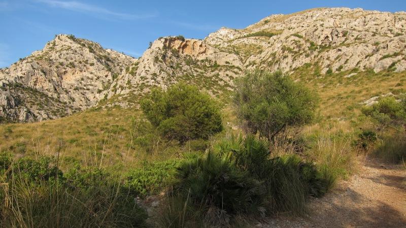 Hills (Mallorca)