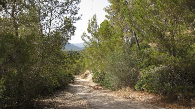 Offroad (Mallorca)