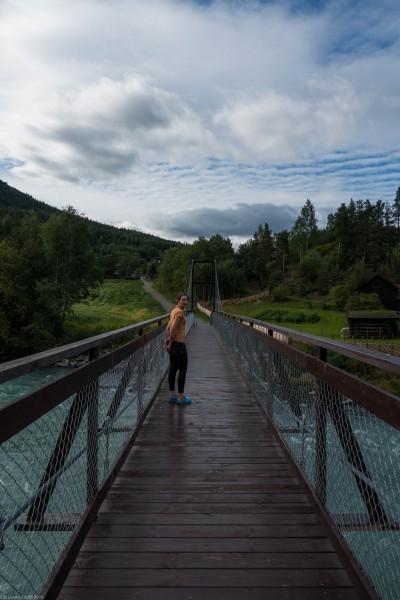A bridge (Cycle Touring Norway 2016)