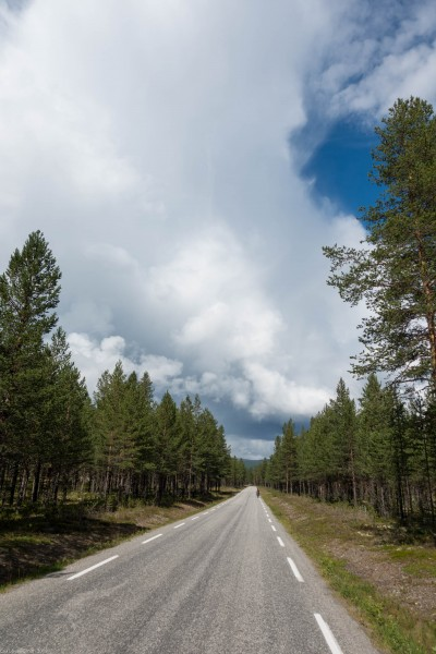 More straight road (Cycle Touring Norway 2016)