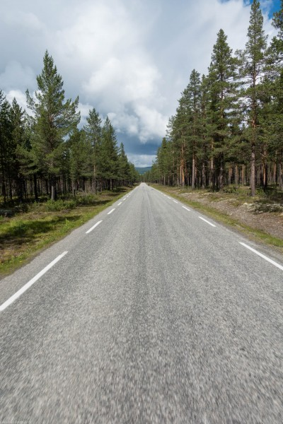 Straight road (Cycle Touring Norway 2016)