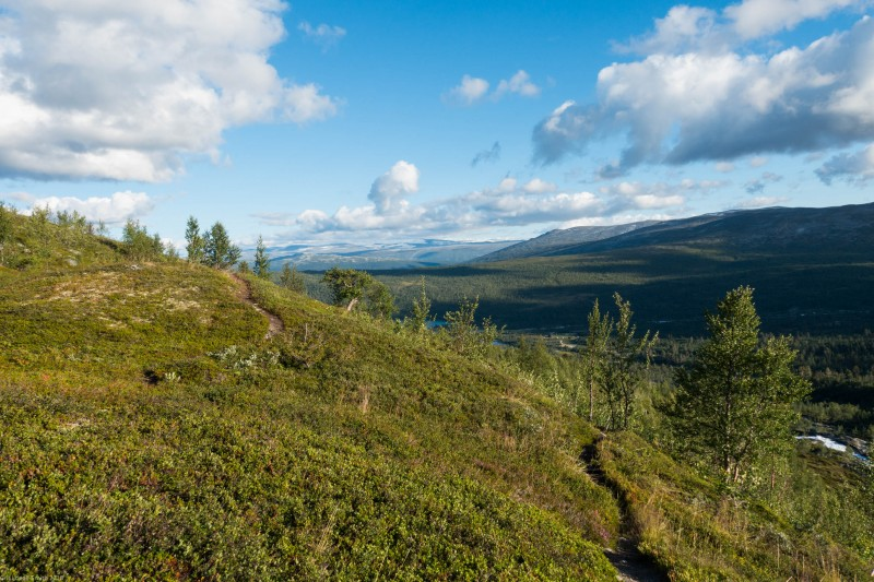 Track (Cycle Touring Norway 2016)