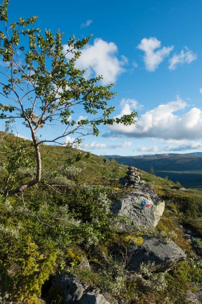 View 2 (Cycle Touring Norway 2016)