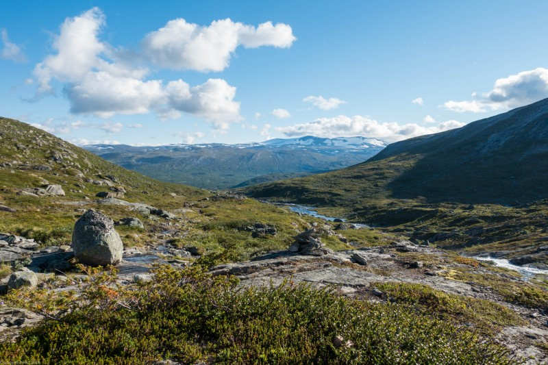 View towards the road (Cycle Touring Norway 2016)