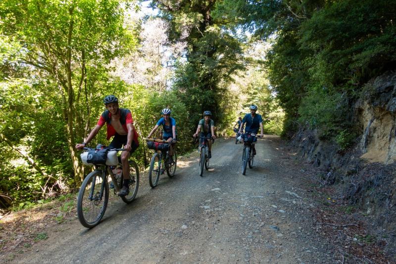 Biking on the island (D'Urville Island Bike Packing Feb 2021)