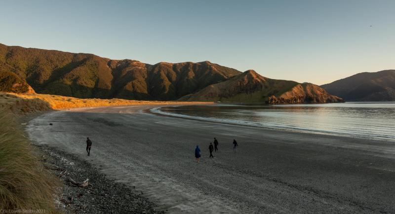 On the beach (D'Urville Island Bike Packing Feb 2021)