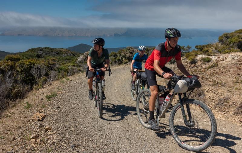 Riding up (D'Urville Island Bike Packing Feb 2021)