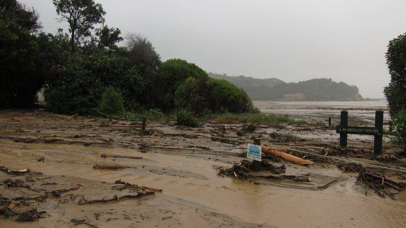 Coast care (Ligar Bay)