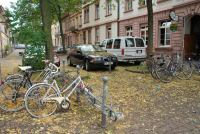 Leaves and bikes (Freiburg, Germany)