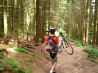 Julian road cycling in the forest 2 (Freiburg, Germany)