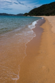 Awesome beach (Abel Tasman)
