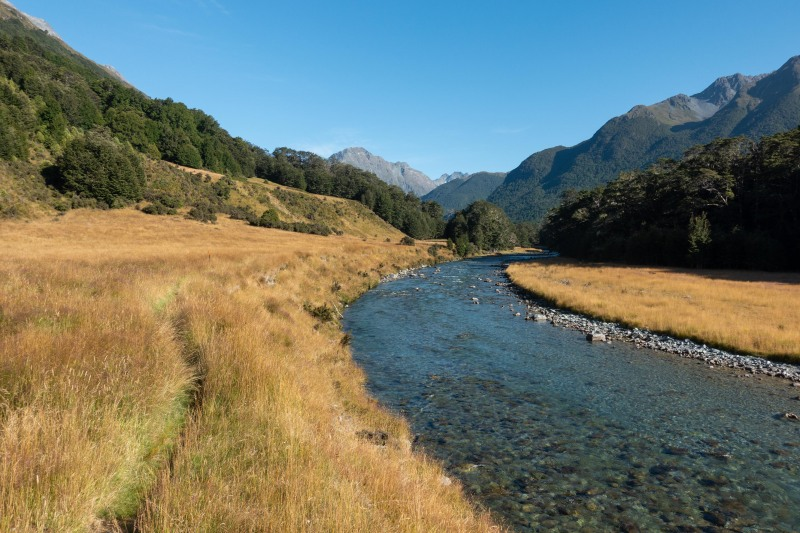 Caples River (Greenstone-Caples Jan 2021)