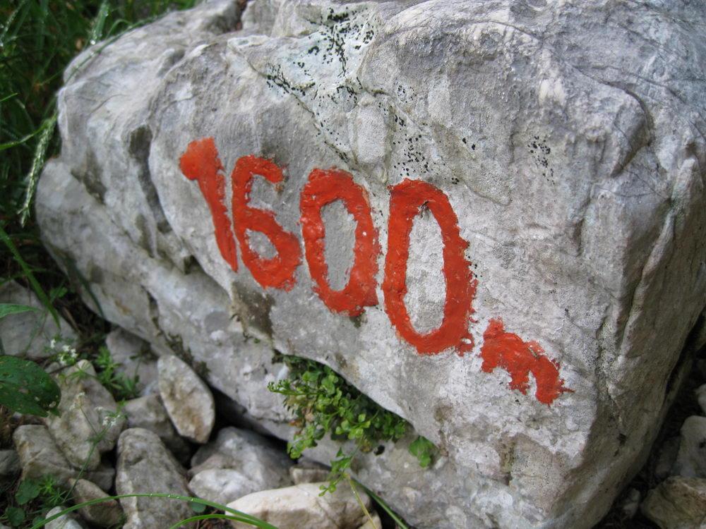 1600m (Slovenia)