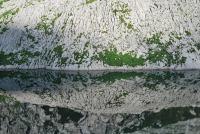 Lake reflection (Triglav Nat. Park, Slovenia)