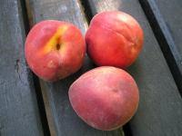 Peaches (Jesenice, Slovenia)