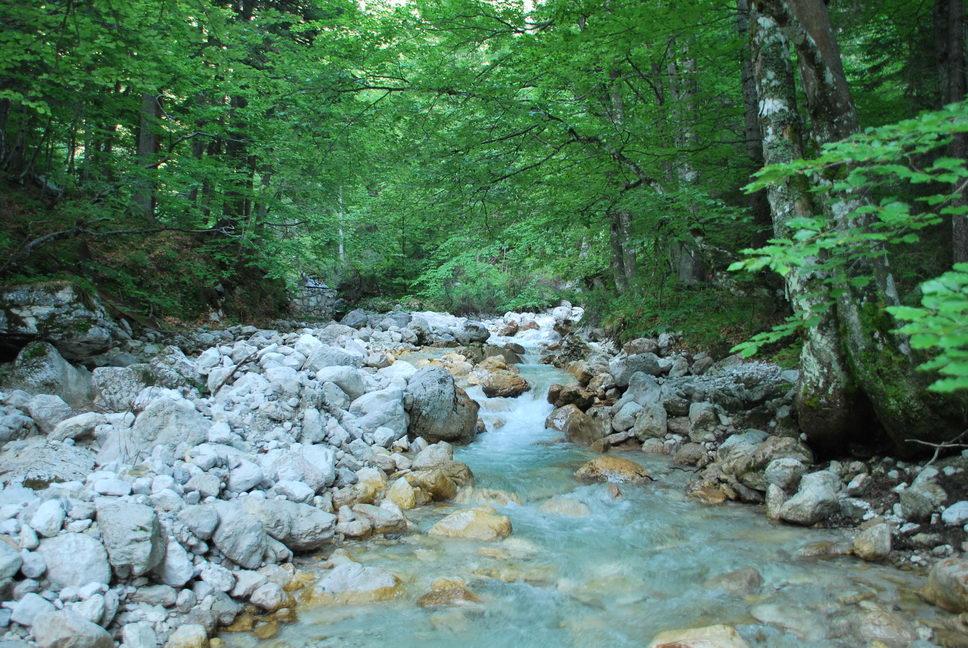 River (Triglav Nat. Park, Slovenia)