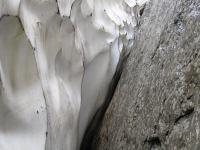 Snow and rock (Triglav Nat. Park, Slovenia)