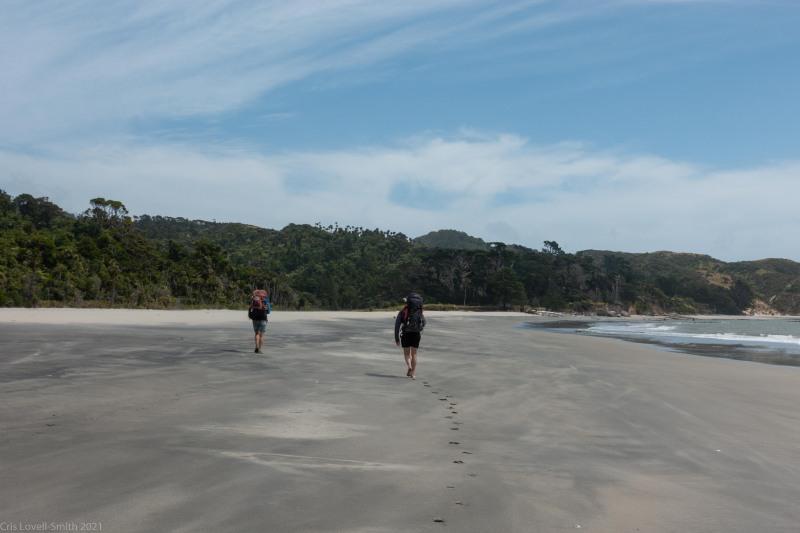 Walking in (Kahurangi Point Jan 2021)