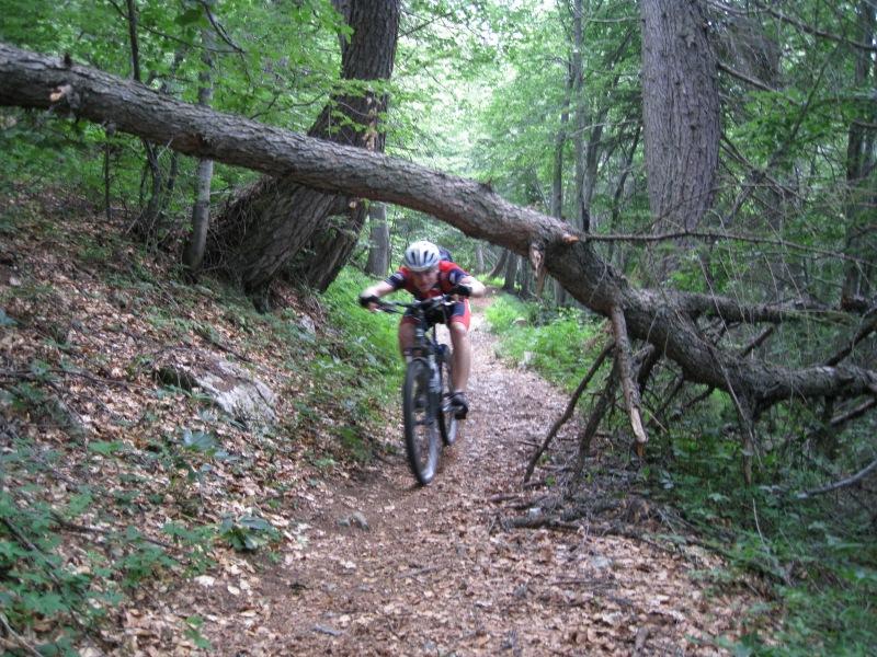 Cris rides under a fallen tree (Lago di Garda, Italy)