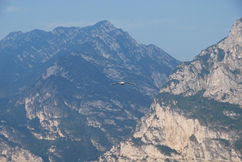 Fly away (Lago di Garda)