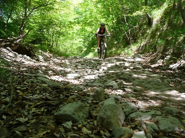 Frauke on another trail (Lago di Garda)