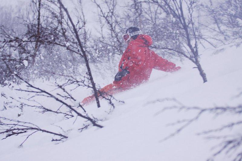 Aly in the snow (Lyngen Alps,Norway)