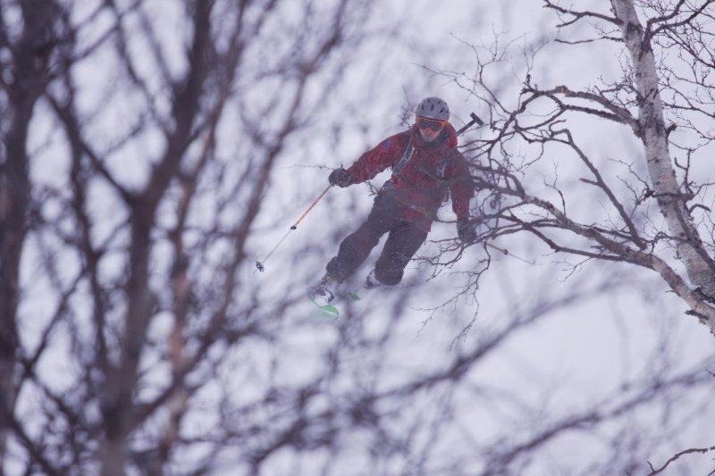 Hallvard through the trees 2 (Tomakdalen, Norway)