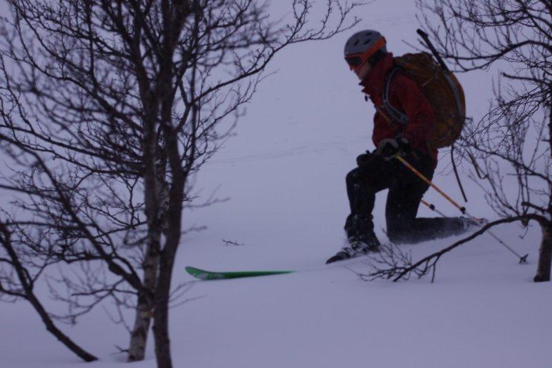 Hallvard through the trees (Tamokdalen, Norway)