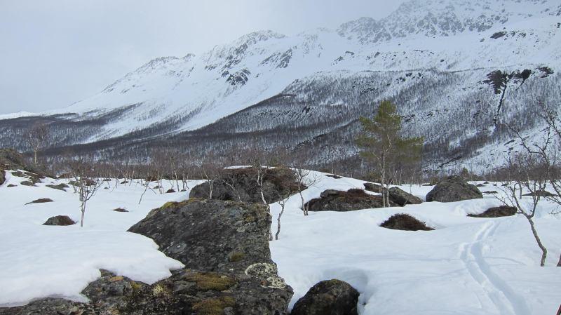 Snow and rocks (Tomesrenna, Norway)