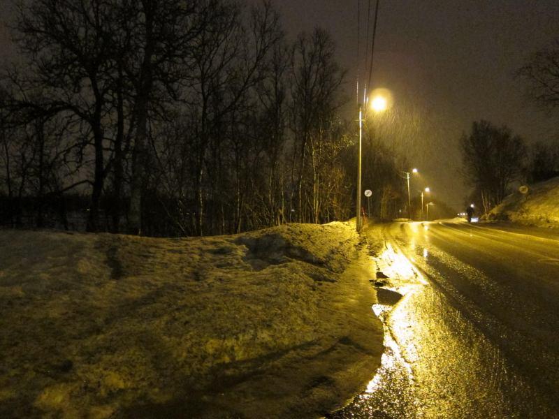 The grovel begins (Tromso, Norway)