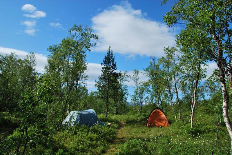Camp (Midtnattsolgaloppen 2009)