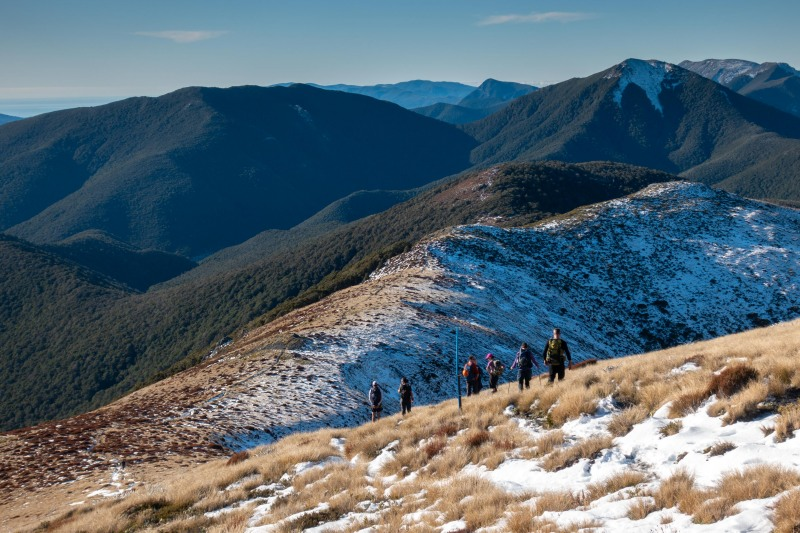 Going back down (Walk up Mt Arthur July 2021)