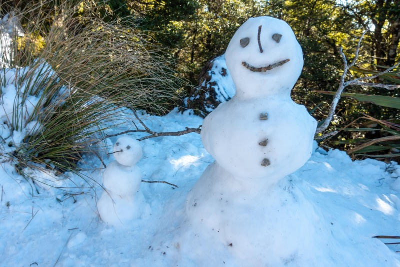 Snow people (Walk up Mt Arthur July 2021)