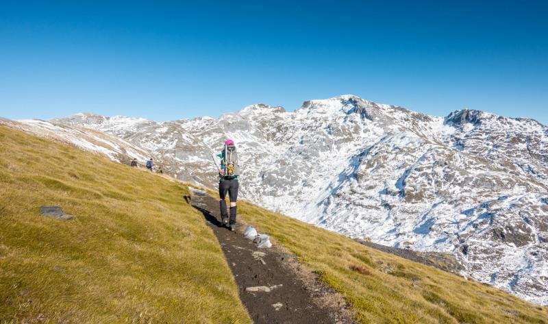 View towards Mt Arthur (Walk up Mt Arthur July 2021)