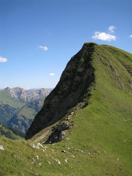 Green grass (Nebelhorn Klettersteig, Germany)