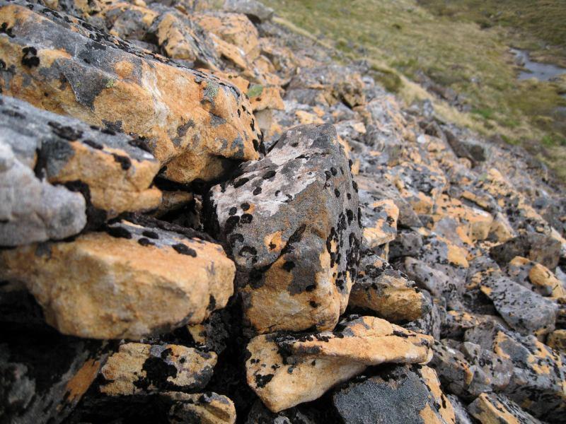 Cool orange rocks (Lewis Pass Tops)