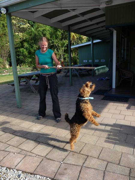 Frauke teasing the doggy (Motueka)